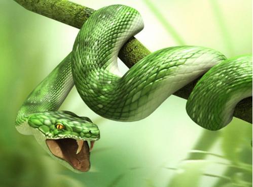 serpenteverde
