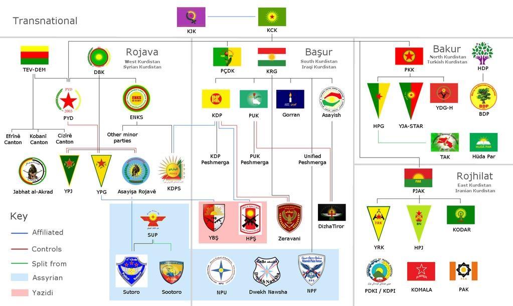 I gruppi Curdi, Siriani, Yazidi ed Internazionali in Siria, molti dei quali parte delle SDF. (Immagine da Reddit)